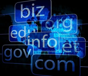 Domain Name, Domain Name Disputes, Domain Disputes, Trademark, Intellectual Property